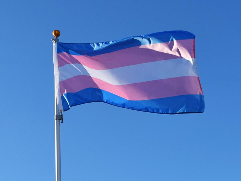 10 Reasons Why The Dontjudgegender Verdict Makes -1144